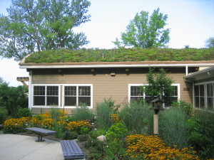 Green roofs and rain gardens are green infrastructure