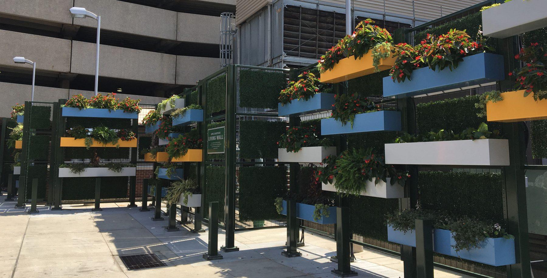 UPMC Shadyside Living Wall - Pashek+MTR